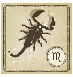 astrological sign - scorpio vector image