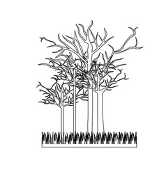 figure leafless trees icon vector image vector image