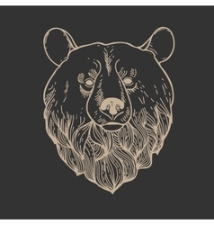 Bear Head Logo vector