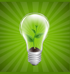 bulb with green sprout sunburst background vector image