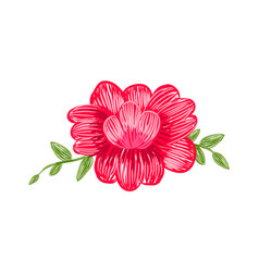 closeup floral pattern on vector image