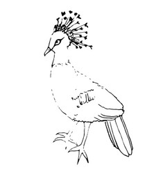 Drawing crowned pigeon black handle of an vector