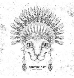 Hipster sphynx cat with indian feather headdress vector