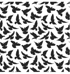 pigeon silhouette pattern vector image