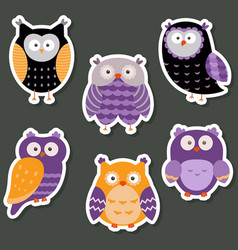 set of cute owls set of cute owls vector image