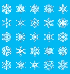 Snowflakes ornamental blue vector