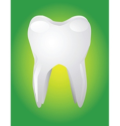 Tooth on green background vector image