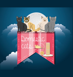 cats under the light of the moon vector image