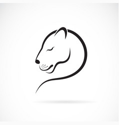female lion design on white background wild vector image