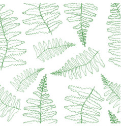 Fern silhouette collection green isolated vector