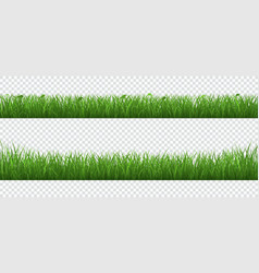 green grass with plants border set isolated on vector image