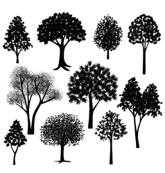Hand drawn trees silhouette vector