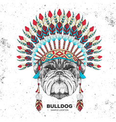 Hipster bulldog with indian feather headdress vector