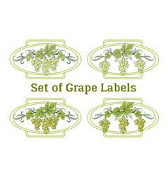 Set grape labels vector