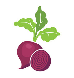 Whole beet root with leaves vector