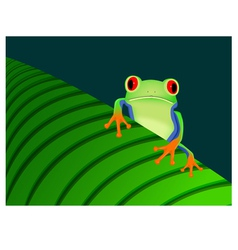 Red eyed tree frog sitting on leaf vector image vector image