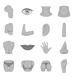 Body parts icons set monochrome style vector image vector image