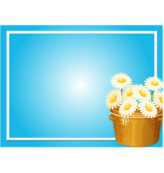 Border template with white flowers in basket vector