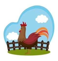 chicken animal farm icon vector image