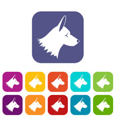 Collie dog icons set vector