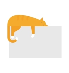 Cute cat sleeping on platform house feline vector image