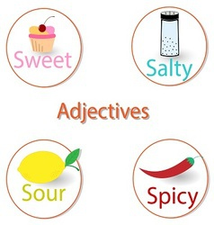 English adjectives Basic tastes vector