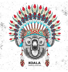 Hipster koala with indian feather headdress vector