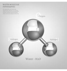 Metallic Water molecule vector image