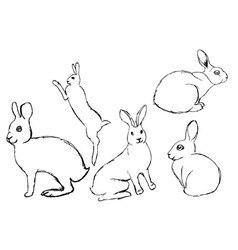 Set of hares rabbits painted with a pen hares in vector