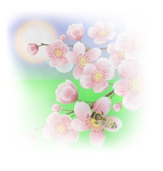spring background with cherry blossoms and bees vector image