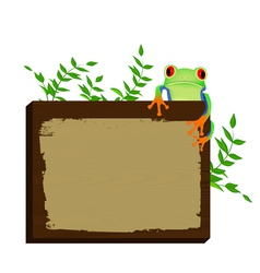 Red eyed tree frog sitting on wood background vector image