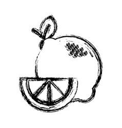 Contour lemon fruit icon stock vector