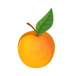 Apricot iconcartoon icon isolated vector