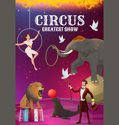 big top circus acrobat and magician animal vector image