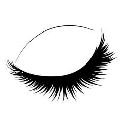 closed eye with long eyelashes vector image