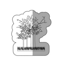 contour leafless trees icon vector image