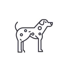 dalmatian line icon sign o vector image
