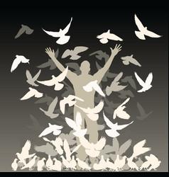flock of pigeons vector image