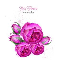 rose flowers watercolor wreath card vector image