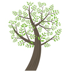 Tree Curve vector