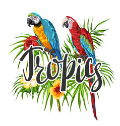 tropical background with parrots vector image