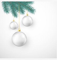 white christmas balls hanging on fir branch vector image