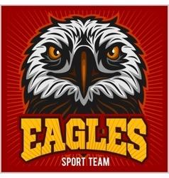 Eagles - sport team vector image