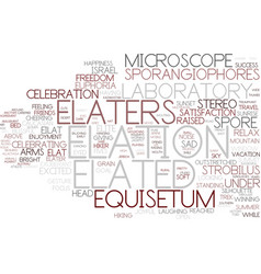 Elation word cloud concept vector