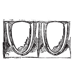 Molding architectural feature vintage engraving vector