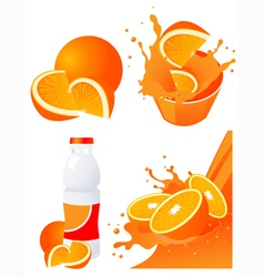 Orange products vector image