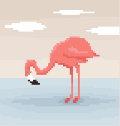 pixel art flamingo is standing in water vector image