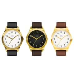 Gold watch vector image