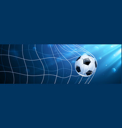 soccer ball in a grid vector image vector image