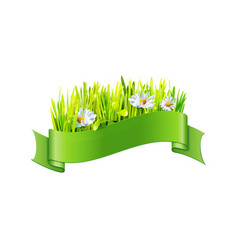 grass and big flowers in green ribbon vector image